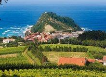 Campo de viñedos, con Getaria y el mar al fondo