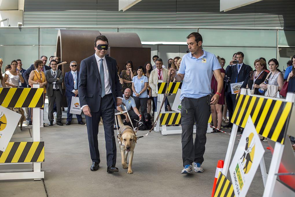 La experiencia de dejarse guía por un perro guía. Foto: Alfredo Cáliz.