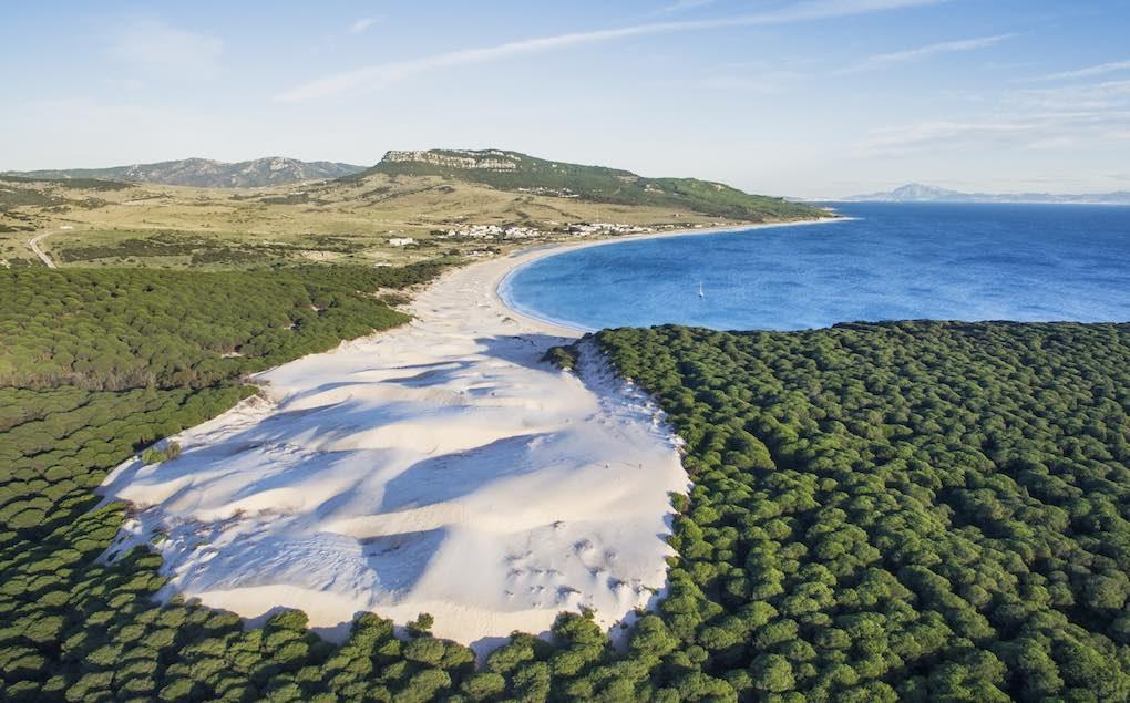 La duna, los pinares y el mar de la Playa de Bolonia. Foto: Patronato Turismo de Cádiz / Jose María Caballero