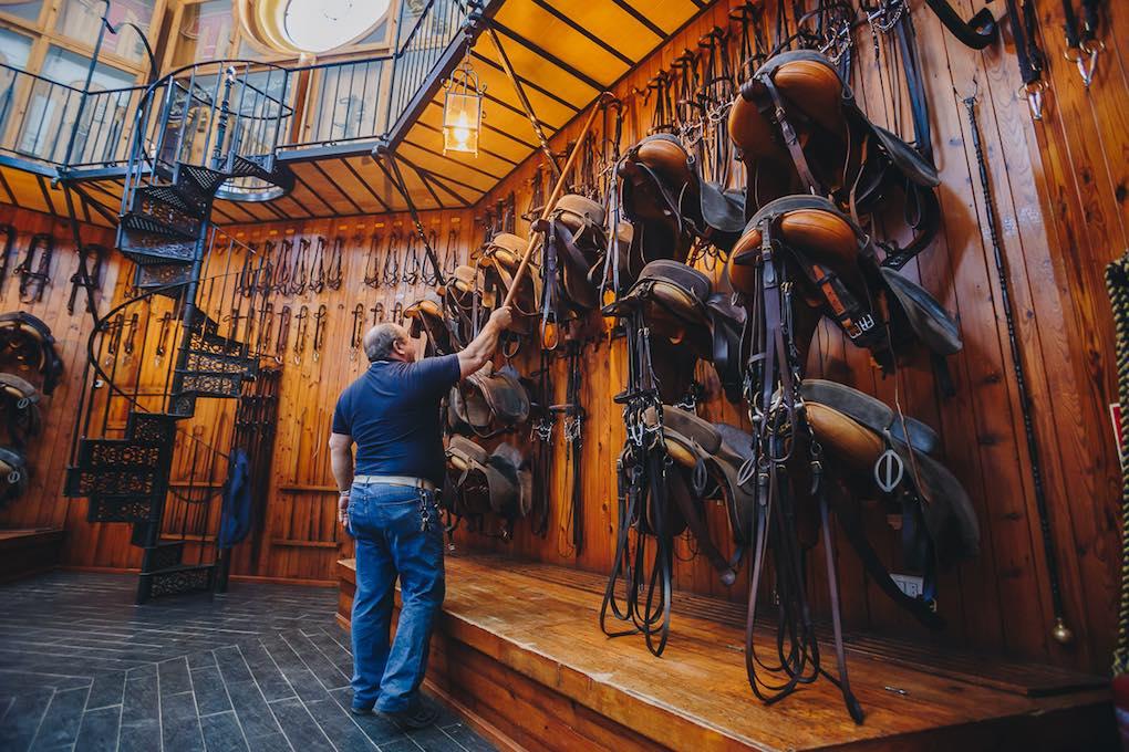 Guarniciones y sillas en la Real Escuela Andaluza de Arte Ecuestre. Foto: Javier Sierra