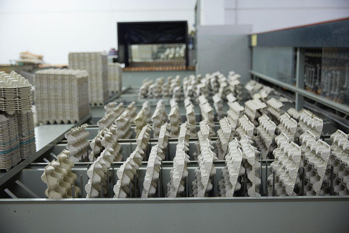 Máquinas de la granja avícola Fracua. Foto: Yoana Salvador