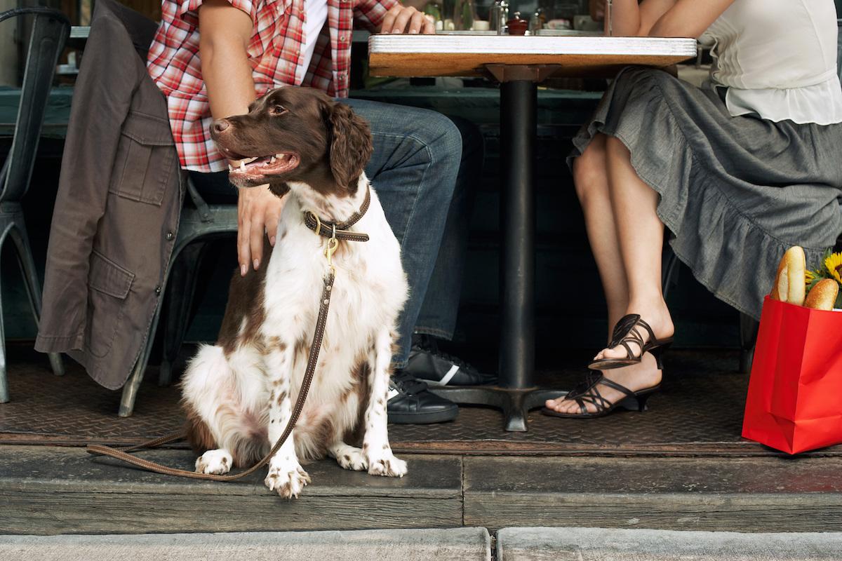 Juntos a tomar algo. Foto: Shutterstock