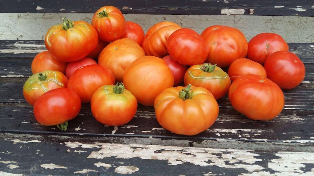 Tomates de La Huerta de Tudela. Foto: Facebook