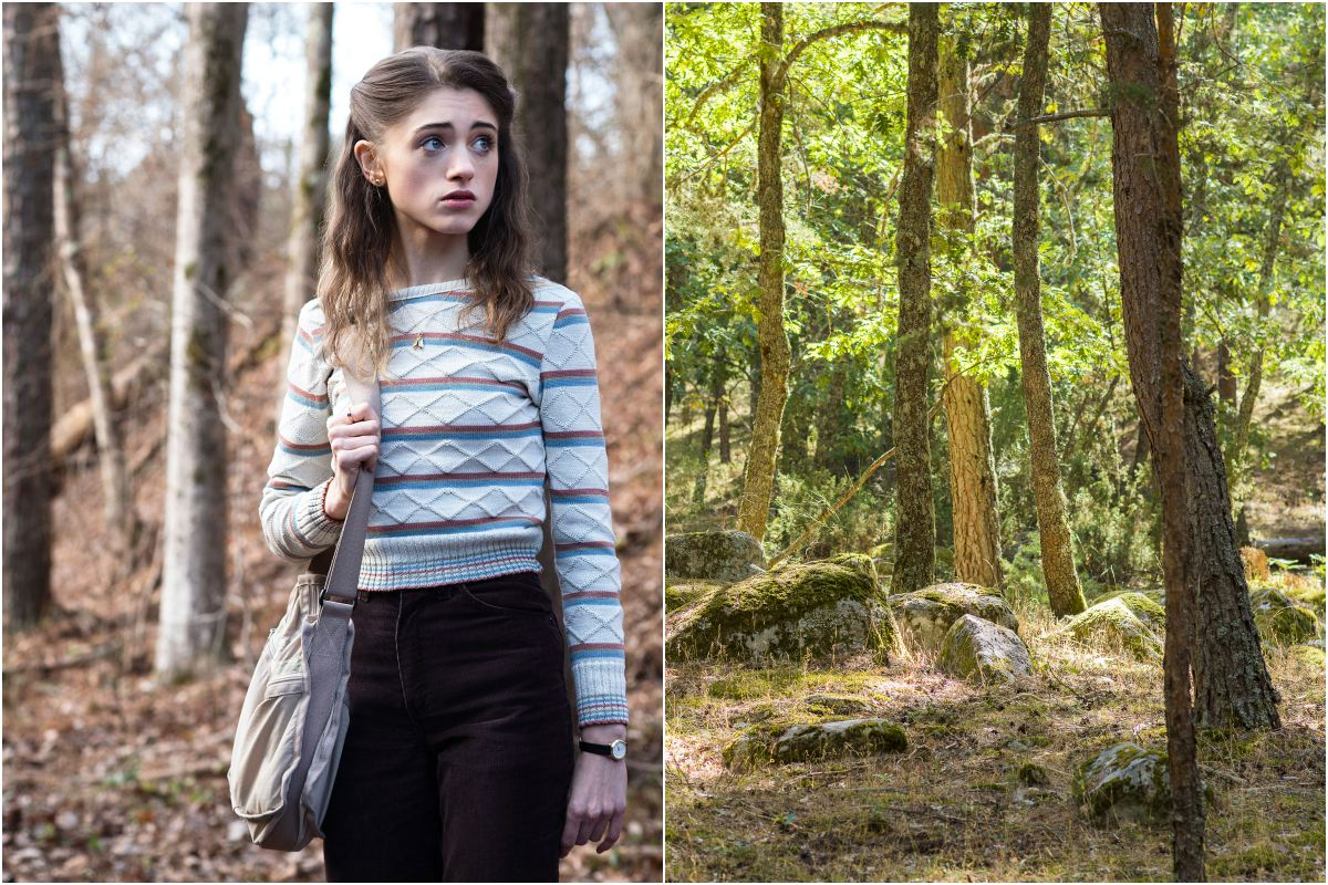 Stranger Things, bosque