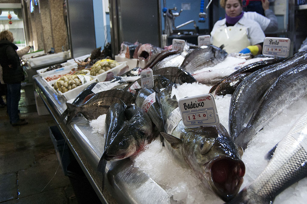 Mercado de Abastos (A Coruña). Bodegón de pescados. Foto: Clara Vilar