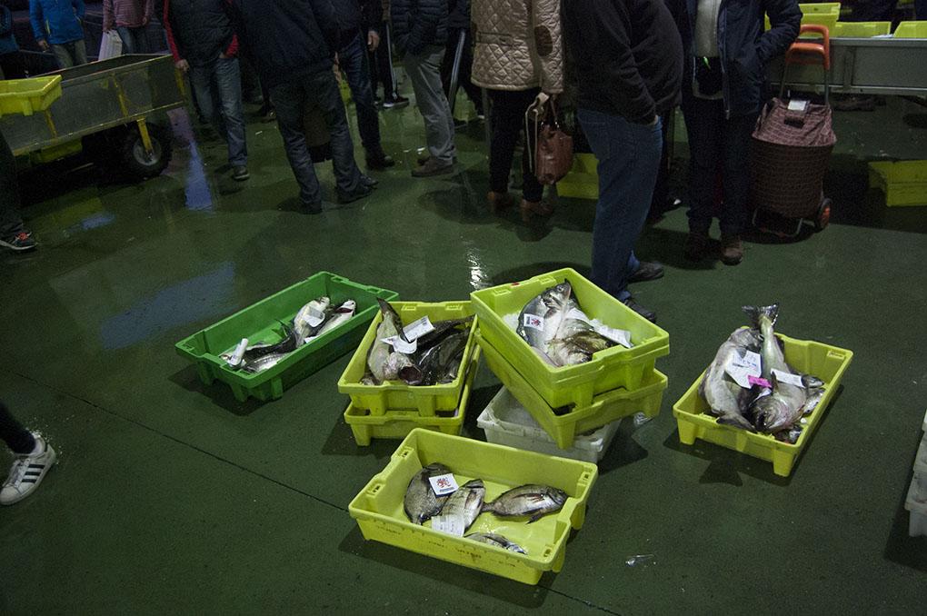 Lonja de Ribeira (A Coruña): cajas vendidas. Foto: Clara Vilar