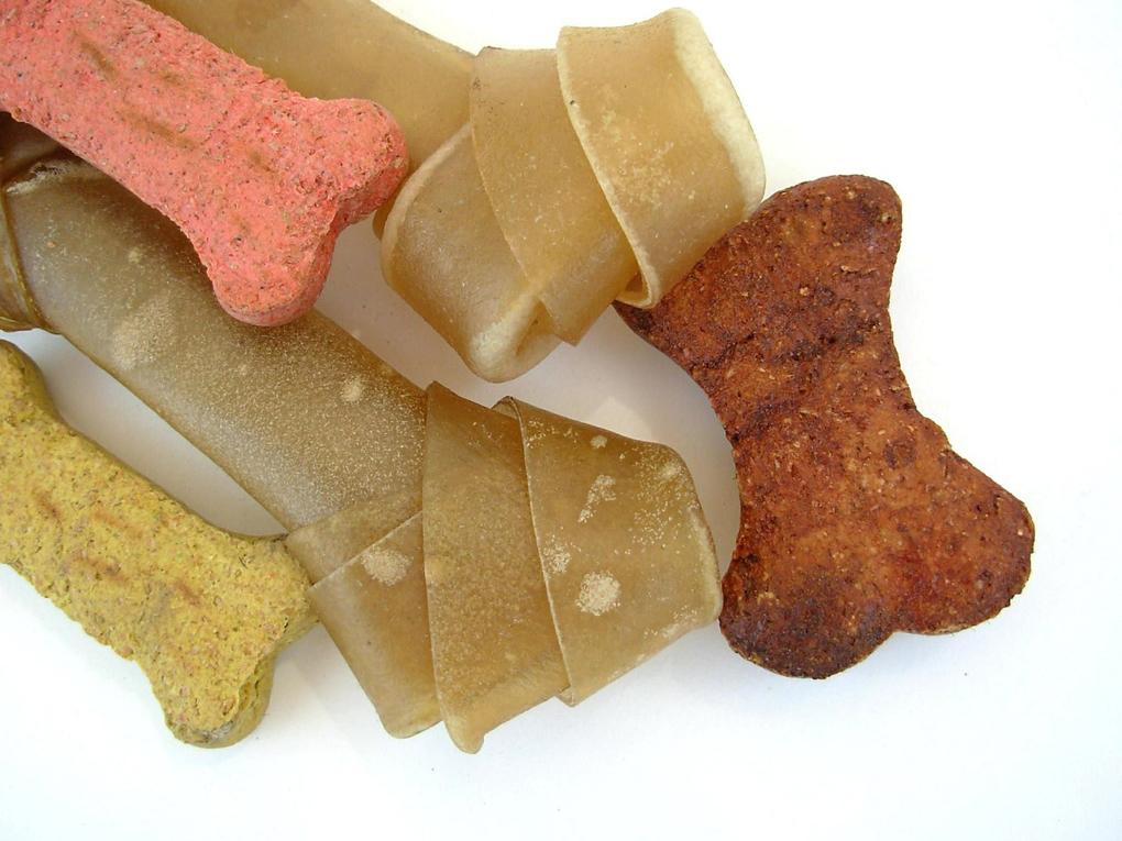 La prevención es idónea para eludir pérdidas de piezas dentales e infecciones en el perro
