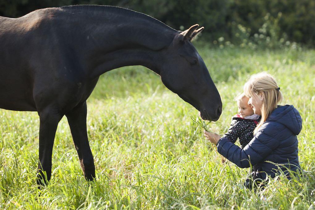 Rosa presenta a la tranquila yegua a su nieta. Foto:Antonio Xoubanova