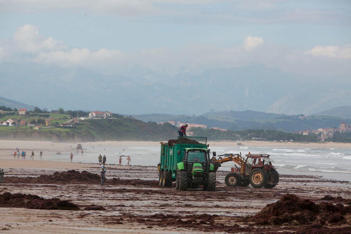 En la playa, unos pasean y otros trabajan. Foto: José García