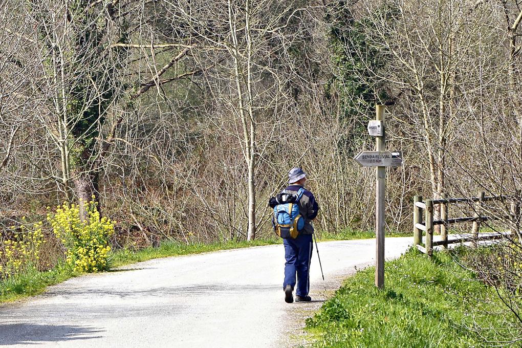 Un peregrino sigue las indicaciones de la senda fluvial para completar una etapa del Camino Lebaniego