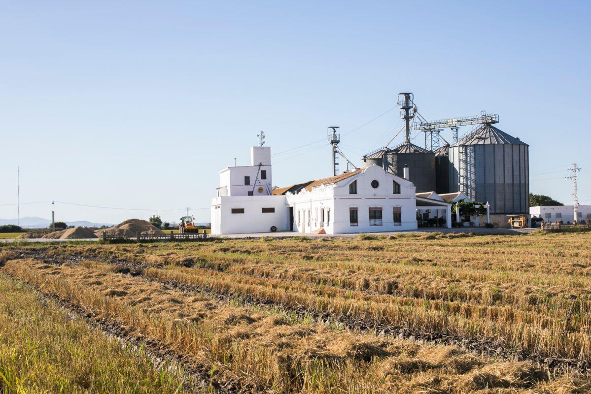 Preparando el campo de la Finca Estell. Foto: Eva Máñez