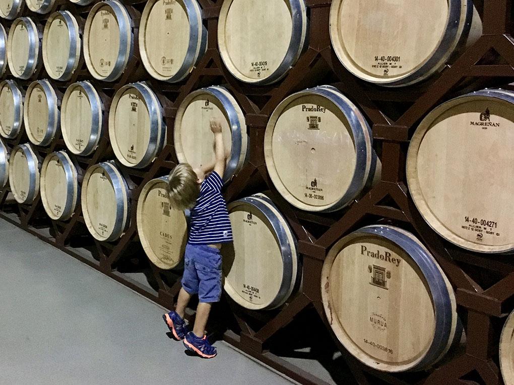 Niño junto a barriles de vino en las bodegas de Prado del Rey. Foto: Beatriz Vigil