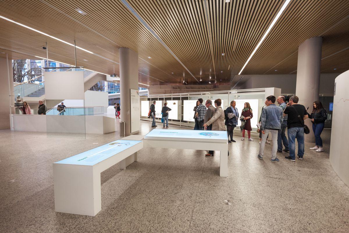 Interior del Museo de la Evolución Humana. Foto: Shutterstock