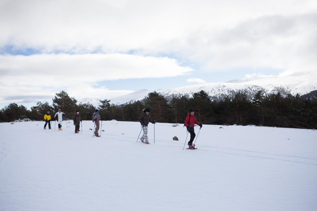 Raquetas en la nieve (Rascafría, Madrid). Claro del bosque (1). Foto: Helena Poncini