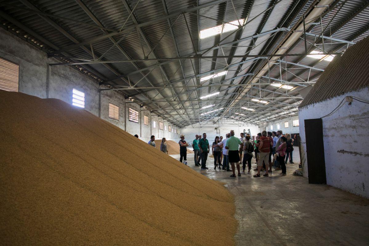 Visitando las naves de almacenaje del arroz. Foto: Eva Máñez