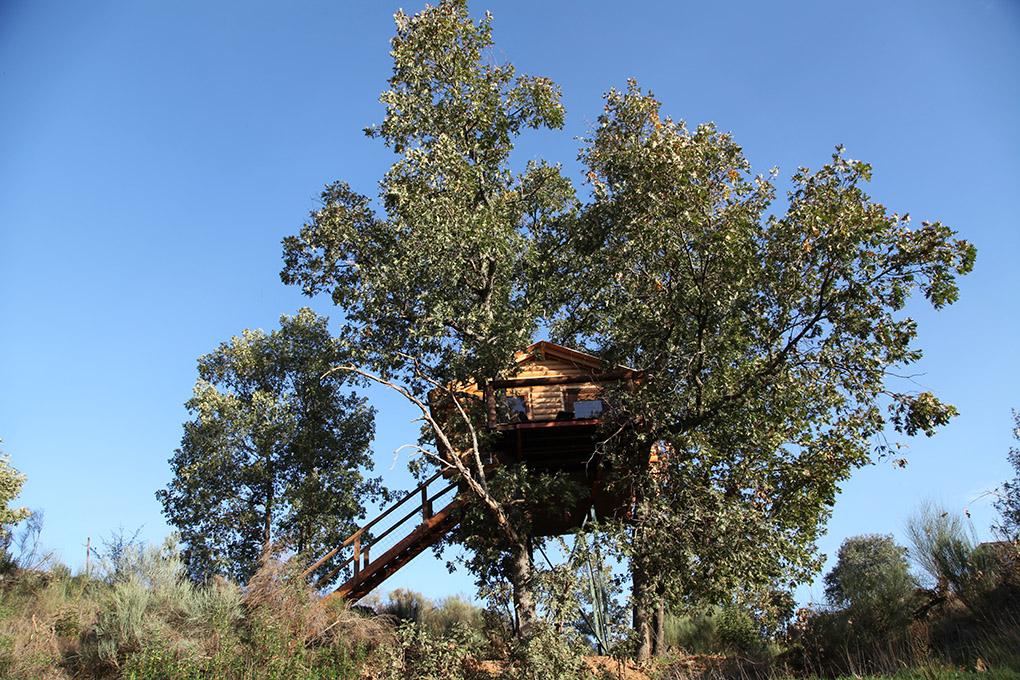 Cabañas en los árboles. Villasbuenas de Gata (Extremadura) - exterior. Foto cedida