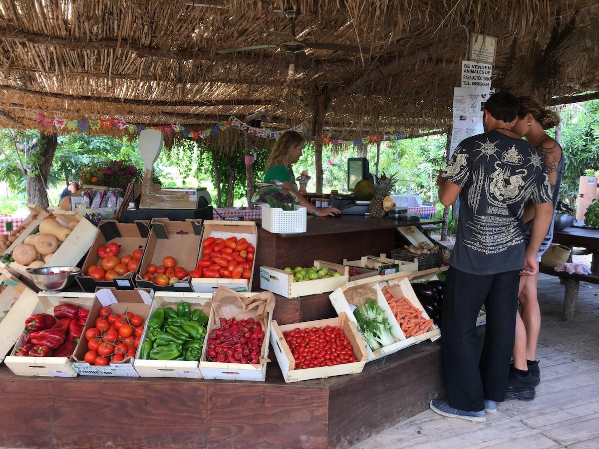 Unos padres compran verduras y frutas ecológicas en la tienda de la granja. Foto: Beatriz Vigil