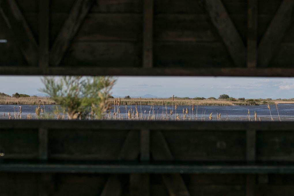 Punto de observación de las aves del Garxal. Foto: Pekebikers
