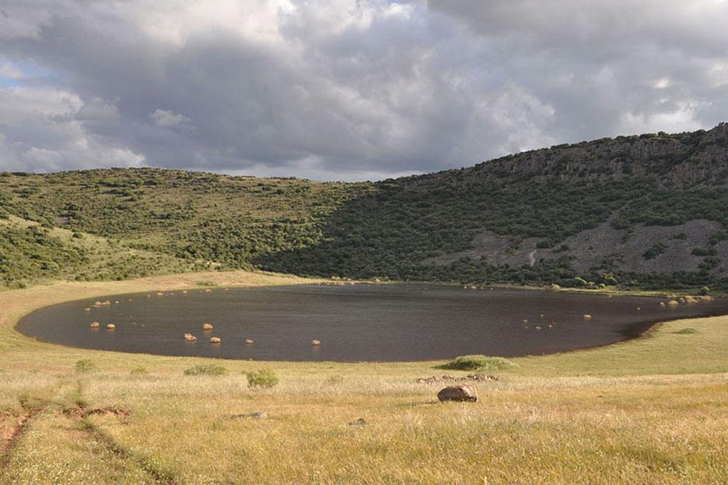 Laguna de la hoya de Cervera. Foto cedida.