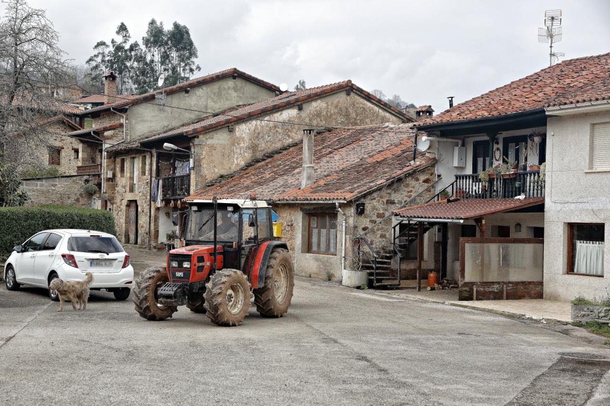 Tractor y perro en medio del pueblo de Cades