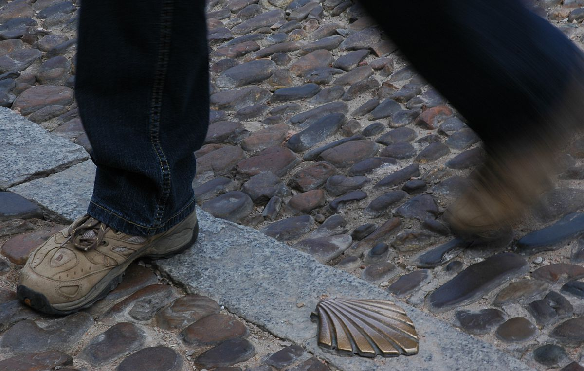Detalle de la calzada en Burgos. Foto: Alfredo Merino
