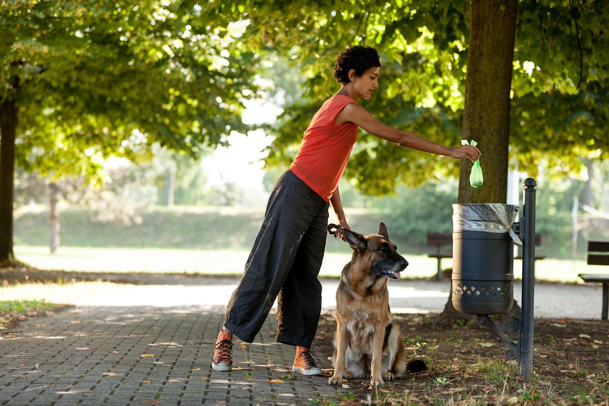 Retomando los paseos por el parque. Foto: Shutterstock