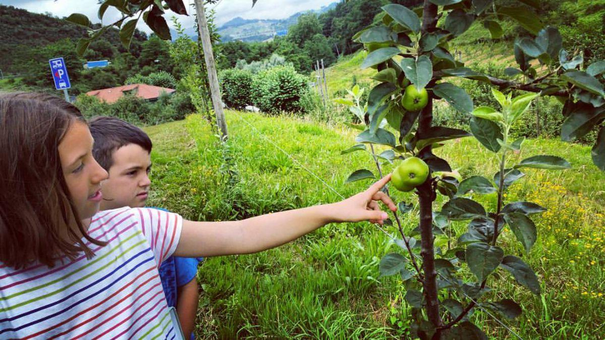 Actividades para familias en 'Petritegi'. Foto: Facebook