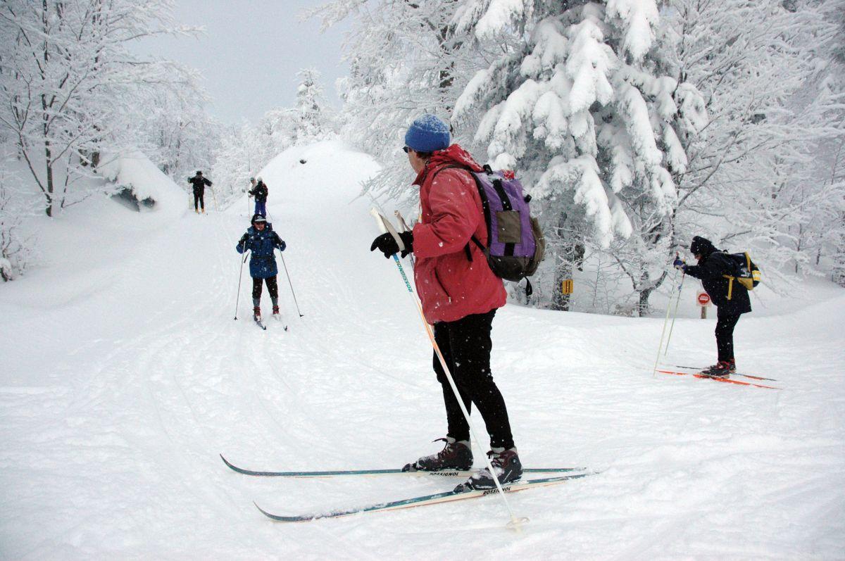 Practicando esquí nórdico. Foto: Alfredo Merino