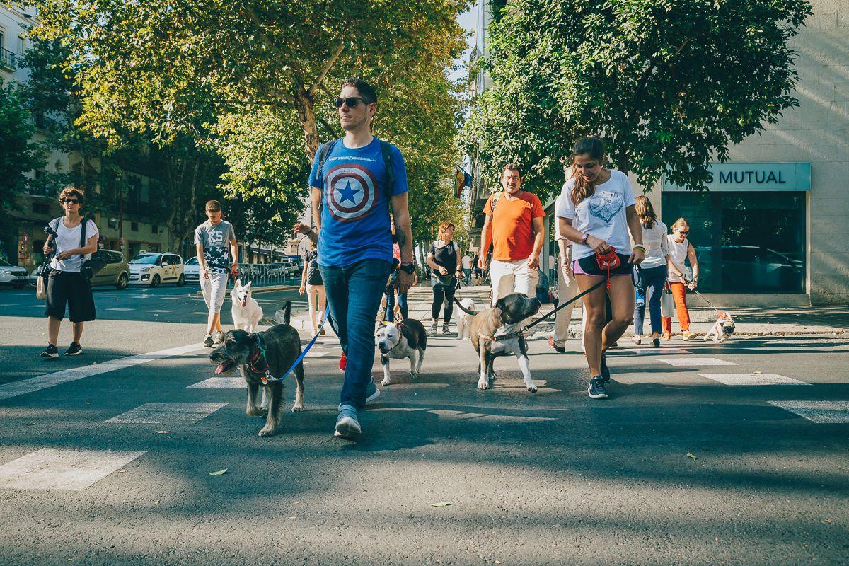 El grupo Obediencia Urbana haciendo frente a todo tipo de situaciones. Foto: Javier Sierra