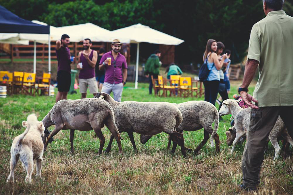 Festival'Era en Llagostera