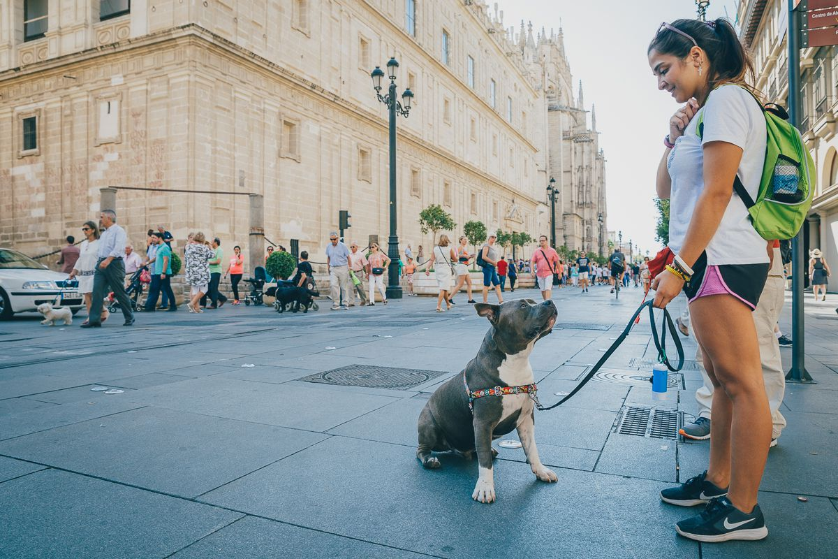 Una chica y su perro por las calles de Sevilla. Foto: Javier Sierra