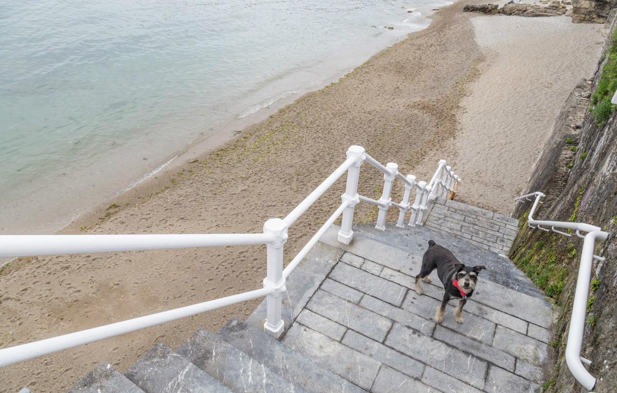 Colega en la playa de El Rinconín. Foto: Micaela de la Maza.