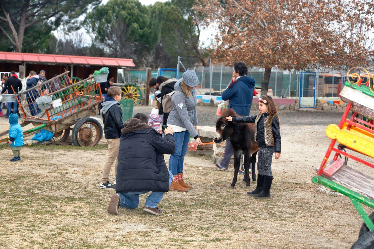 Haciéndose fotos con los burros. Foto: Roberto Ranero