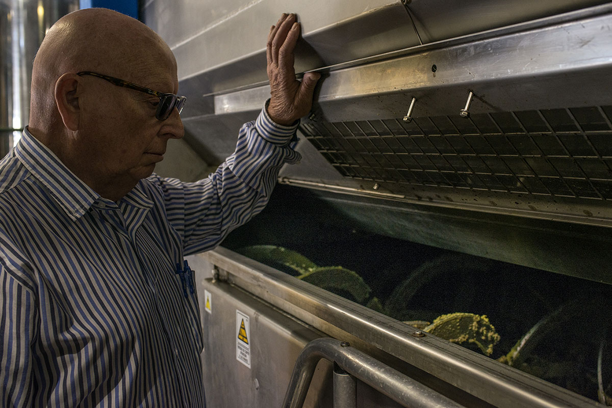 Felipe Castro se asoma a la máquina de molturación. Foto: Alfredo Cáliz