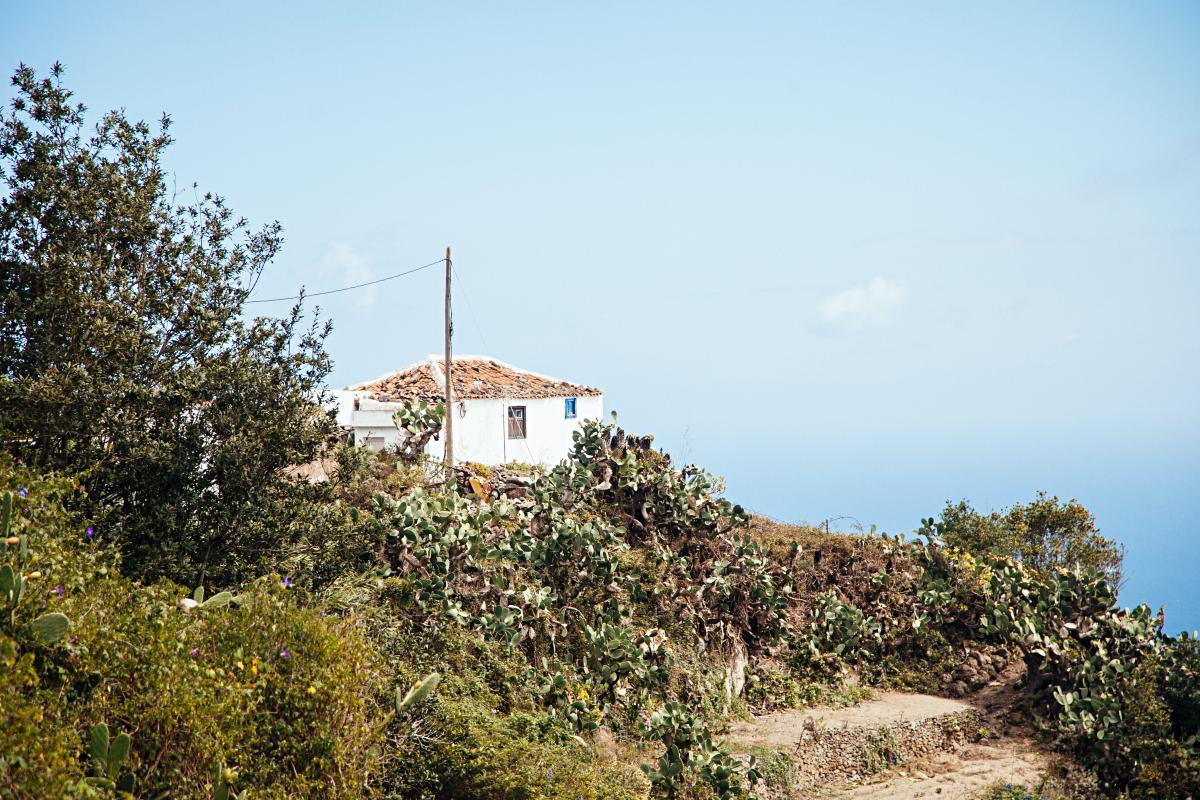 Detalles de un zona agrícola y de pastoreo. Foto: Rocío Eslava