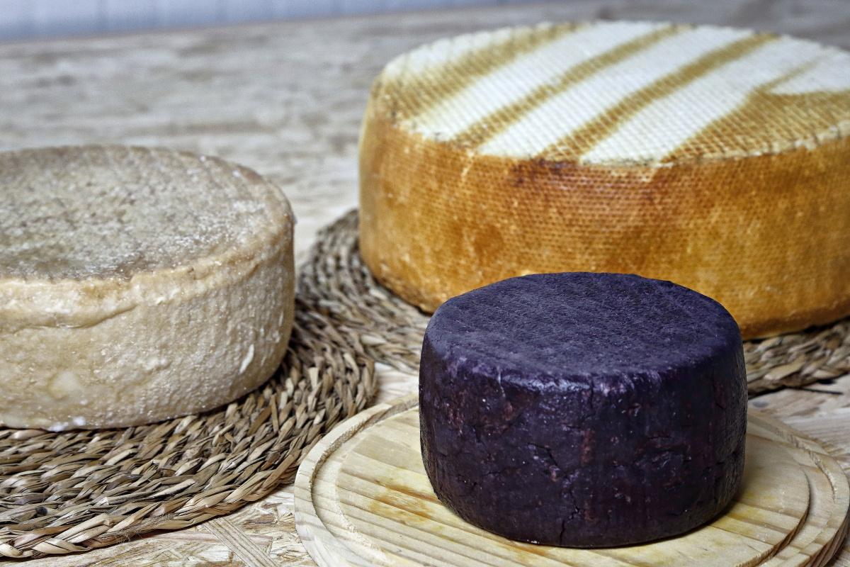 Quesería Montesdeoca (Adeje, Tenerife). Tres variedades de quesos. Foto: Roberto Ranero.