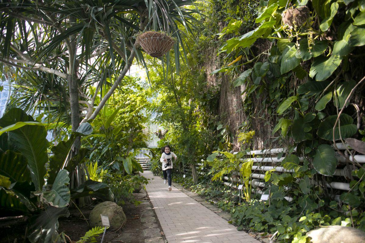 Jugando por el Botánico. Foto: Eva Máñez