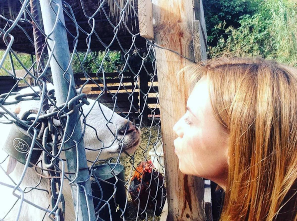 La actriz Aura Garrido interactúa con una oveja. Foto: Instagram