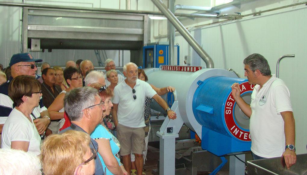 Un grupo de turistas visita las instalaciones de la almazara Oleícola San Francisco. Foto cedida