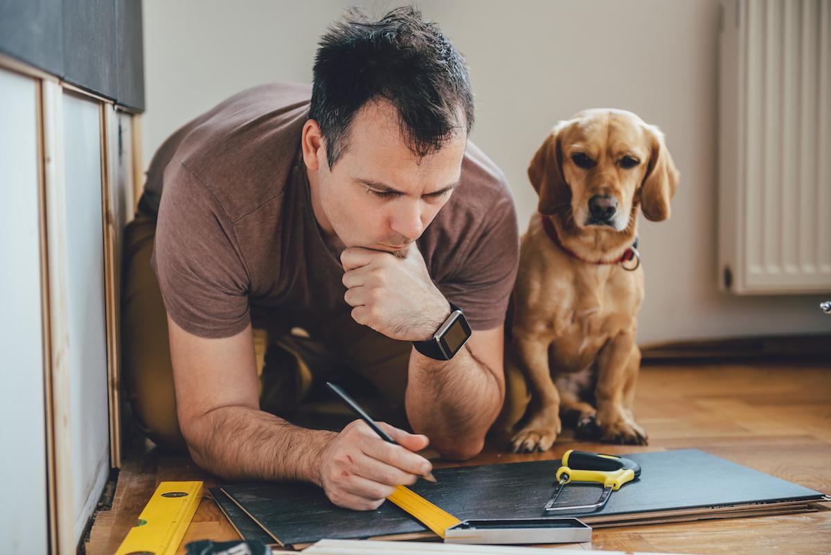 Perro aburrido mirando a su cuidador trabajar. Foto: Shutterstock