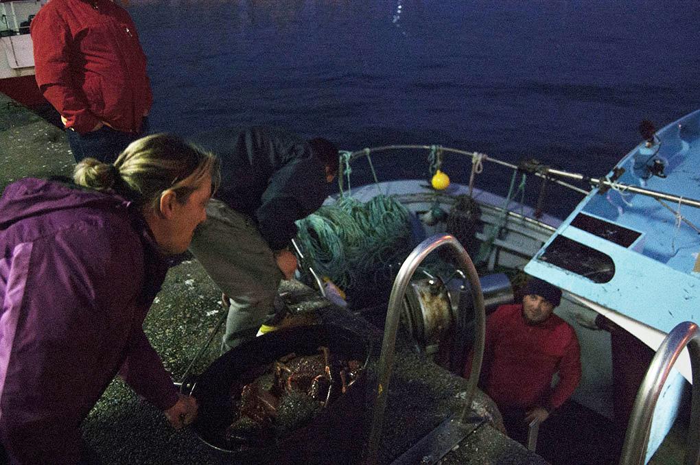 Lonja de Ribeira (A Coruña): centollas en el barco. Foto: Clara Vilar