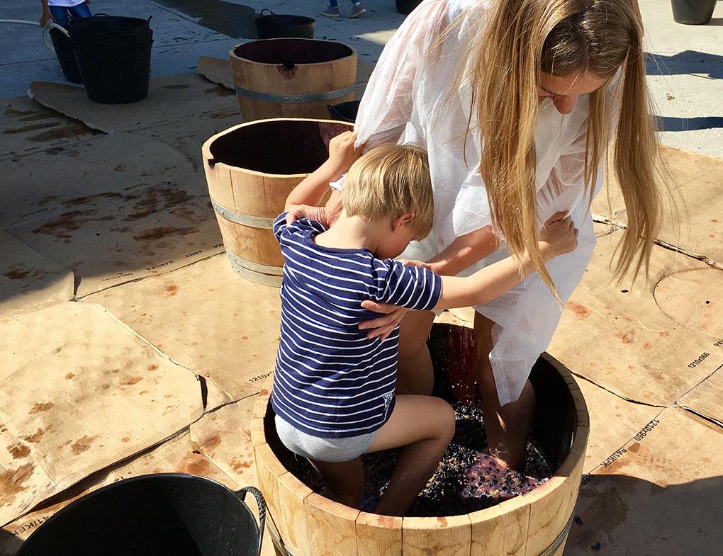 Pisada de la uva durante la vendimia con niños. Foto: Beatriz Vigil