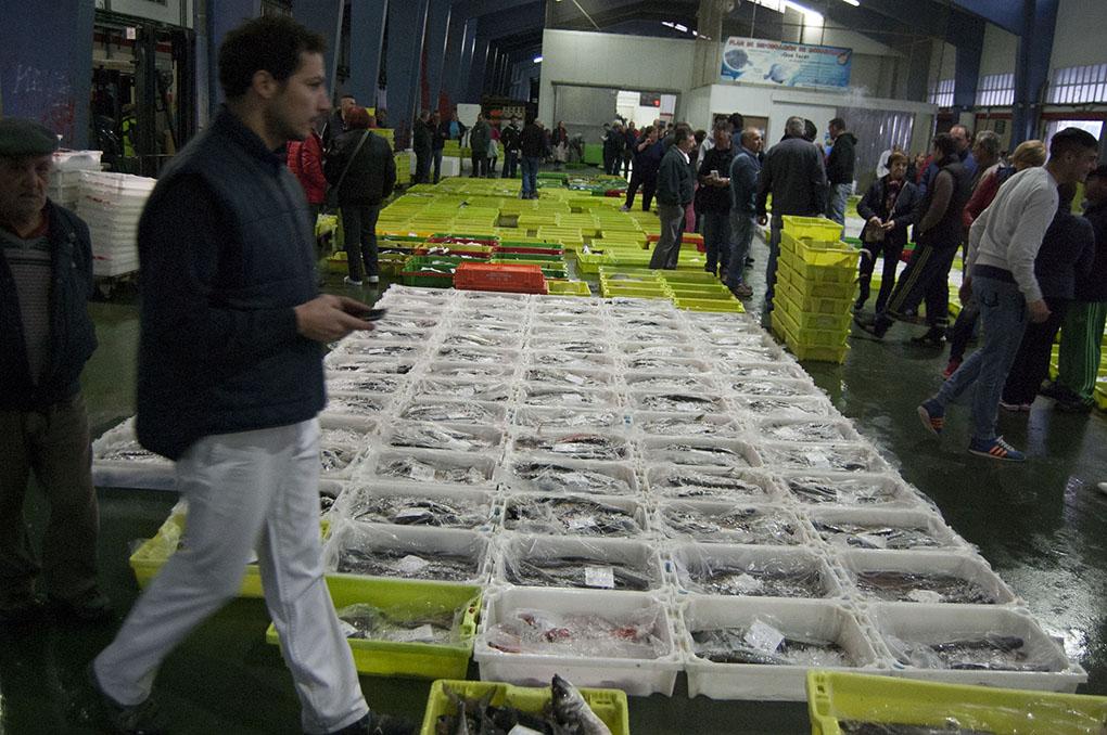 Lonja de Ribeira (A Coruña). Subasta de marisco y pescado. Foto: Clara Vilar