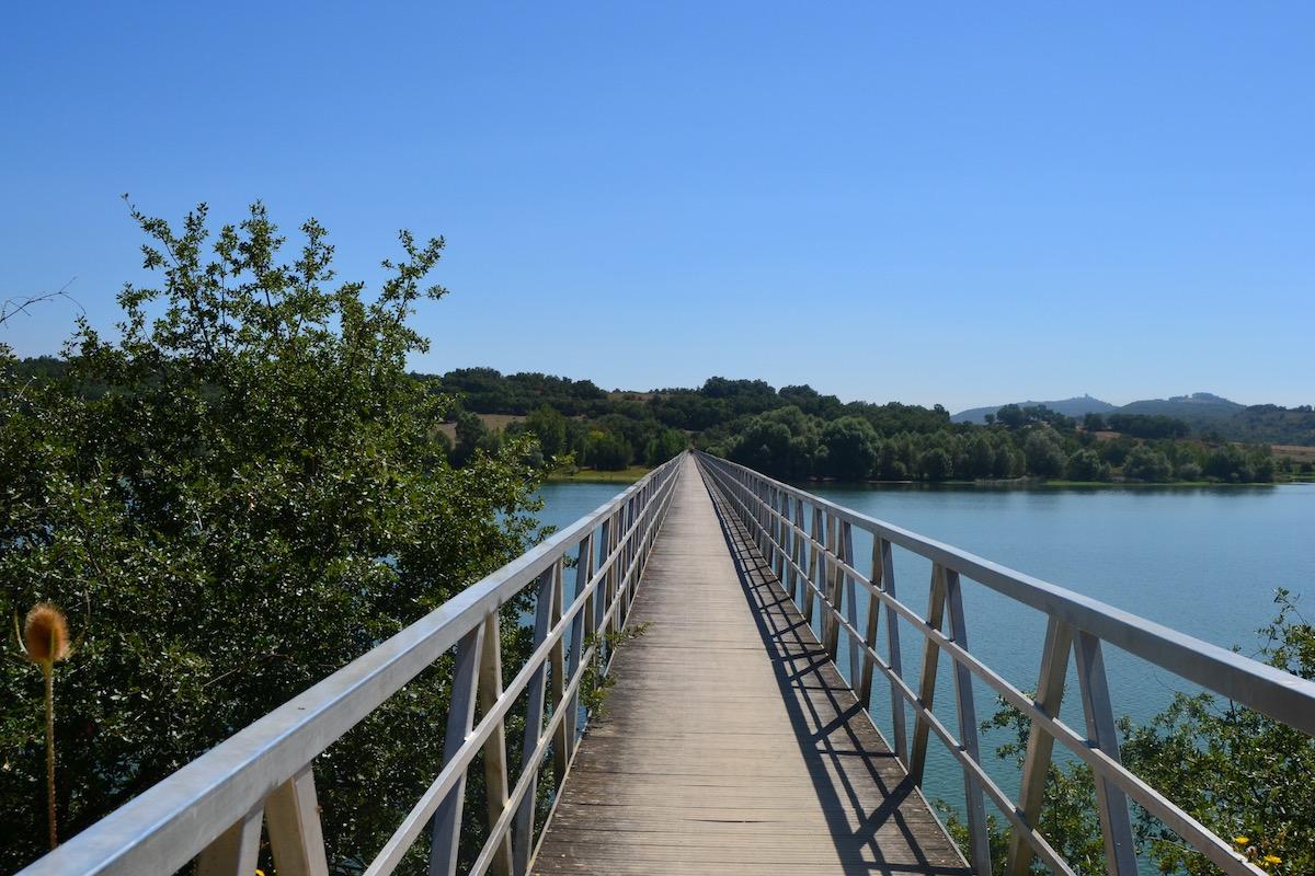 Una de las pasarelas del parque provincial. Foto: Júlia Manresa