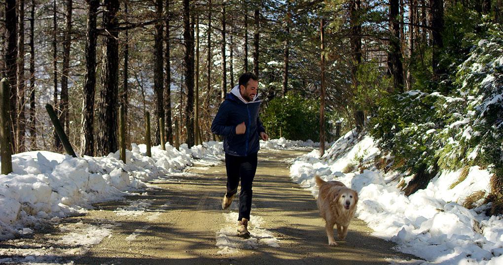 Pasear con tu mascota por la montaña nevada. Foto: shutterstock