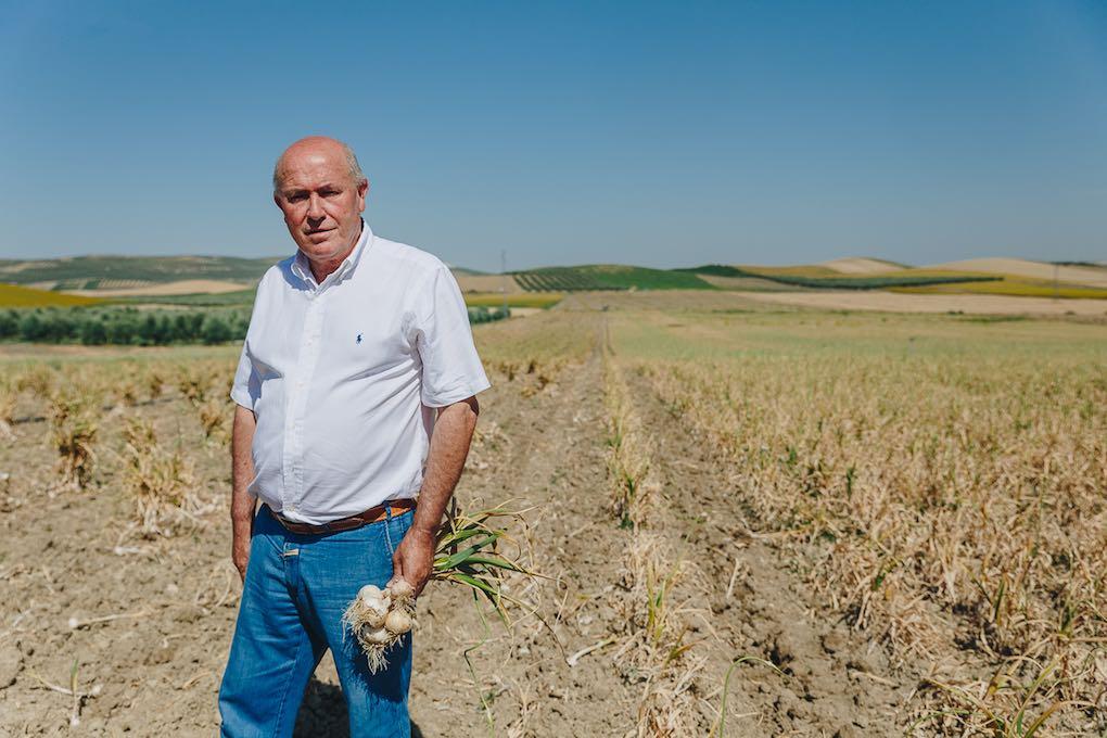 Manuel, el gerente, con cinco ajos de caiibre diferente. Foto: Javier Sierra