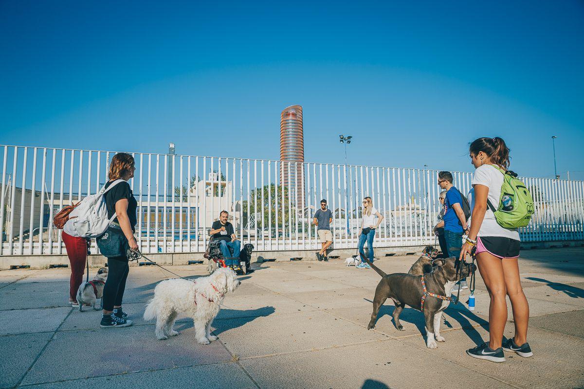 Los participantes de la ruta Obediencia Urbana atienden a Sergio. Foto: Javier Sierra