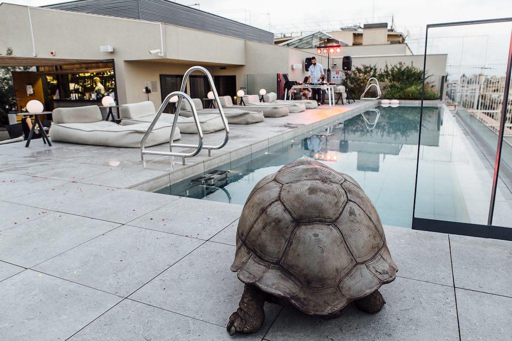 La escultura de la tortuga de la terraza del Omm. Foto: César Cid