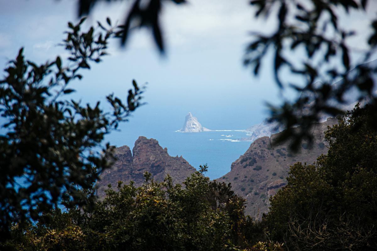 Espectacular el Roque de Almáciga, a lo lejos. Foto: Rocío Eslava