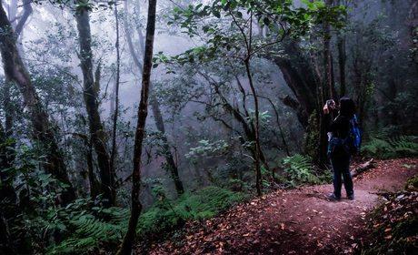 Un recorrido por la mitología de La Gomera | Guía Repsol